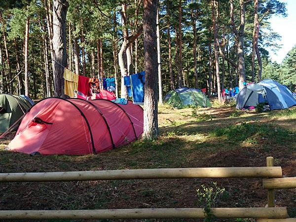 Borrby Camping